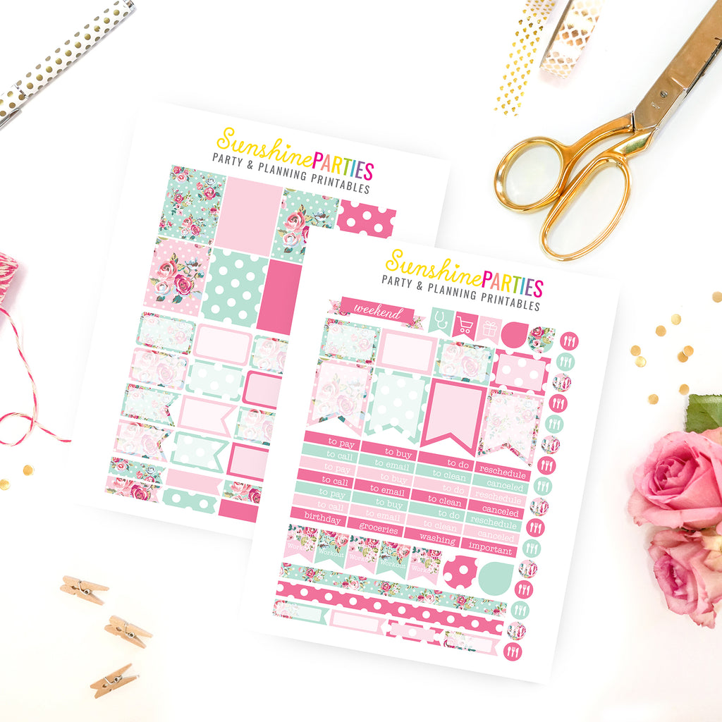 Shabby Chic Turquoise Planner Stickers | Organizer Planner Stickers