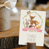 Woodland Baby Shower Party Signs For A Girl