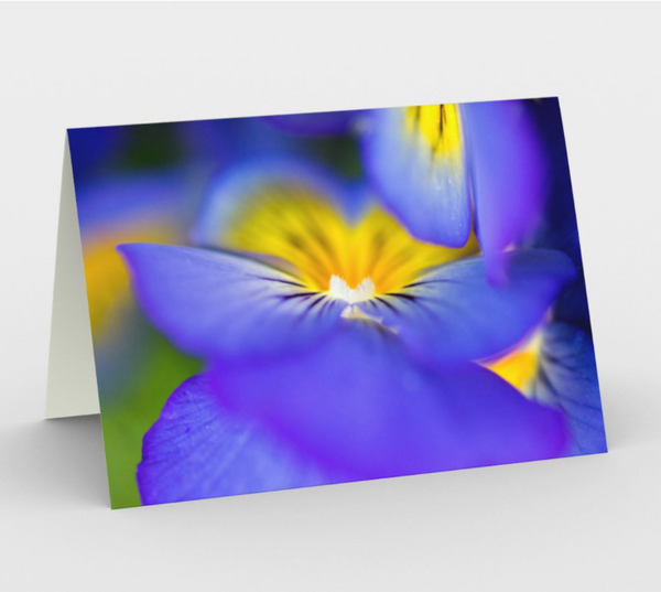 Pansy Abstract Greeting Card