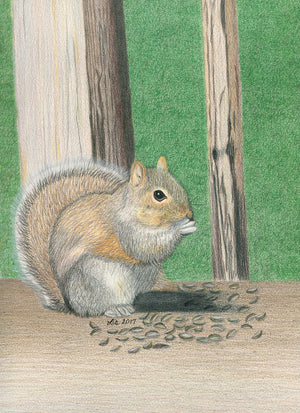 Seedy Squirrel - Original Art