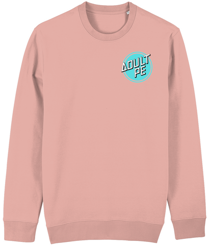 'CRUZ CONTROL' HEAVYWEIGHT SWEATSHIRT- CANYON PINK