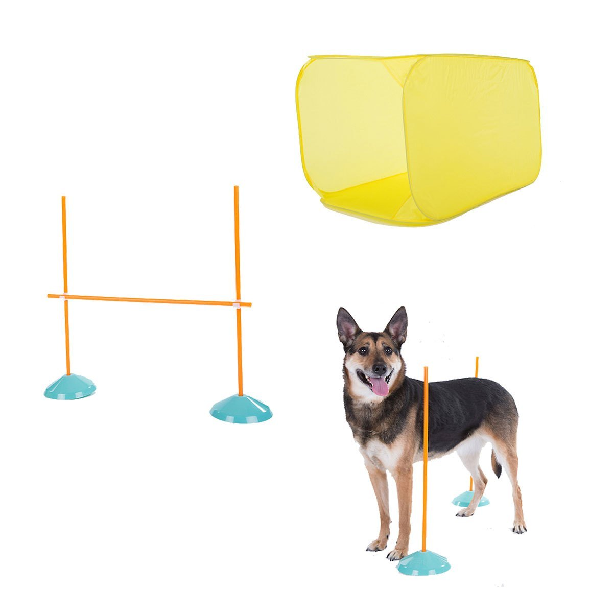Agility Starter Kit with Tunnel and High Jump - 7 Piece - BowWowAgility
