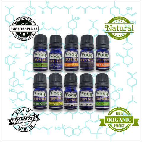 FOGG TERPENES - Captain's Original 10-Pack