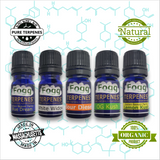 FOGG TERPENES - Best Sellers Collection