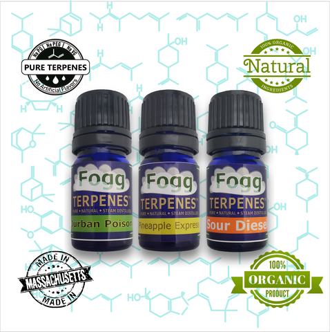 FOGG TERPENES - Citrus Collection