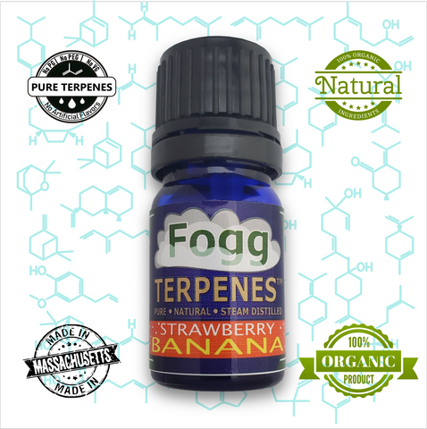 FOGG TERPENES -  Strawberry Banana