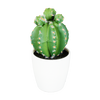 Mini planta artificial Cactus
