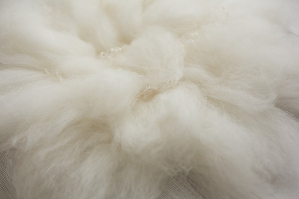 Felted Wool ~ Natural White - True Art Collection