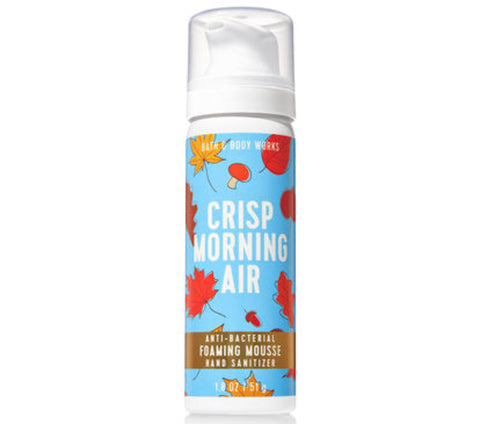 Bath & Body Works Crisp Morning Air Anti Bacterial Foam