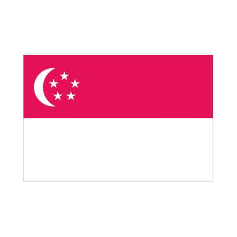 EMA International Flag - Singapore