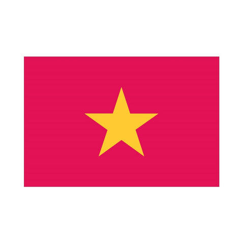 EMA International Flag - Vietnam