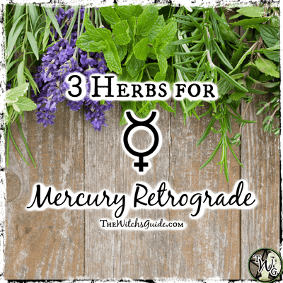 3 Herbs to Use for Mercury Retrograde