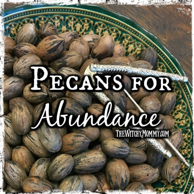 Crafting Magick Tip: Using Pecans to Attract Abundance