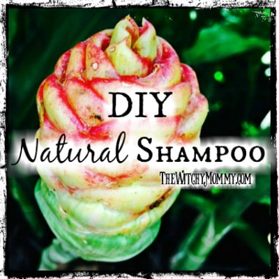 Shampoo Ginger Plant: How to Make Natural Shampoo