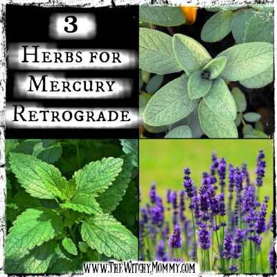 3 Herbs for Mercury Retrograde, Crafting Magick Tip