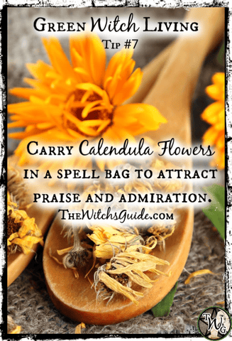 Green Witch Living Tip, Calendula Flowers, The Witch's Guide