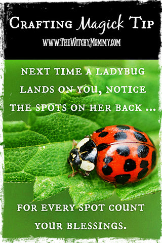 Ladybug Spirit Animal Crafting Magick Tip