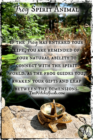 Frog Spirit Animal, Frog Medicine, Frog Totem, Frog Symbolism, The Witch's Guide