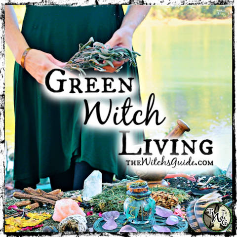 Green Witch Living Course, Plant Witch, Green Witchcraft, The Witch's Guide, Herbalism for Witches