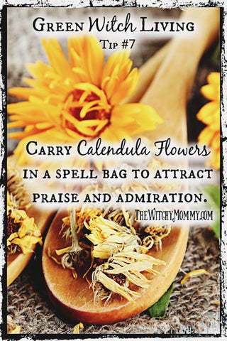 Calendula Flowers Green Witch Living Tip, The Witchy Mommy