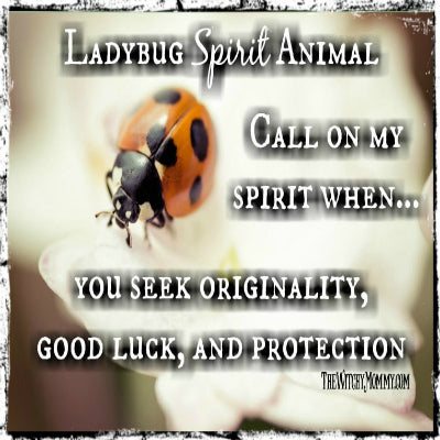 Ladybug Symbolism, Spirit Animal, Totem, Crafting Magick Tip