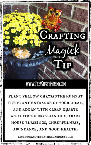 Crafting Magick Tip: Chrysanthemums in Witchcraft, Magick