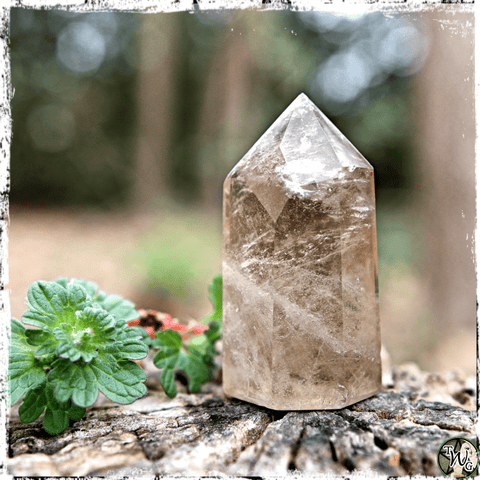 Smoky Quartz Crystal Pyramid, EMF Protection, Grounding Stone, Green Witch, The Witch's Guide