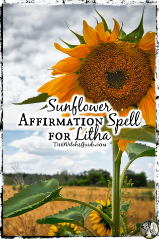 Sunflower Affirmation Spell for Litha, The Witch's Guide