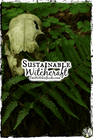 Sustainable Witchcraft: Protecting Mother Earth, The Witch's Guide