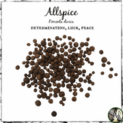 Allspice Herb for Determination, Luck, Peace, The Witch's Guide