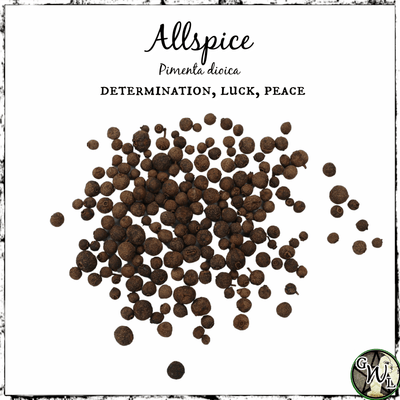 Allspice for Luck | Witchcraft Herb | The Witch's Guide