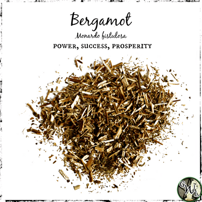 Bergamot Herb for Success, Power, and Prosperity
