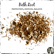 Beth Root, Witchcraft Herb, The Witch's Guide