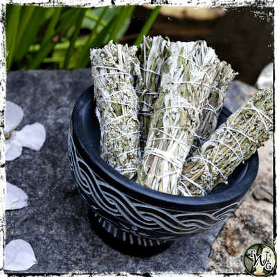 Black Sage Mugwort Herbal Smudge Bundle, Pack of 2 | Astral Travel
