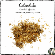 Calendula for optimism, success, and favor, The Witch's Guide, witches apothecary