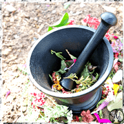 Black Cast Iron Mortar and Pestle, Heavy Duty, Large, Grinding Herbs, Resins, The Witch's Guide