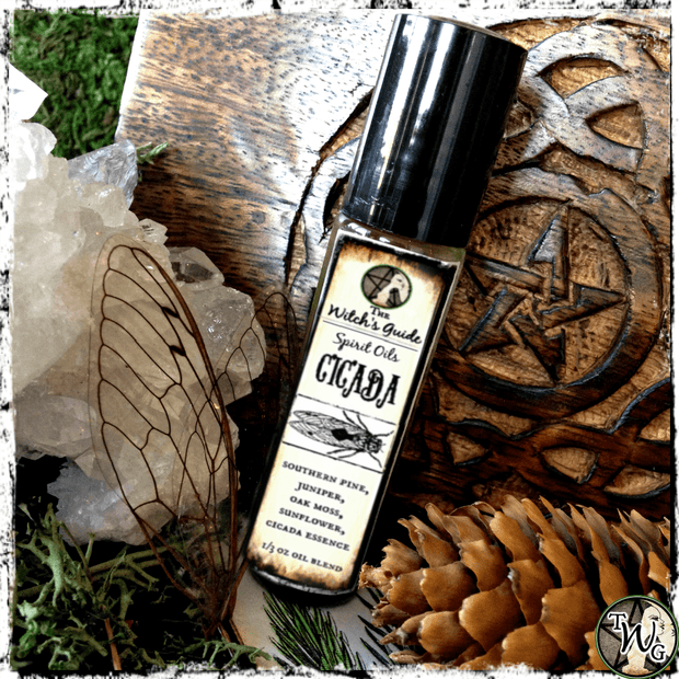Cicada Spirit Oil, Ritual Oil, Meditation Oil, Animal Totem, Witchcraft, The Witch's Guide