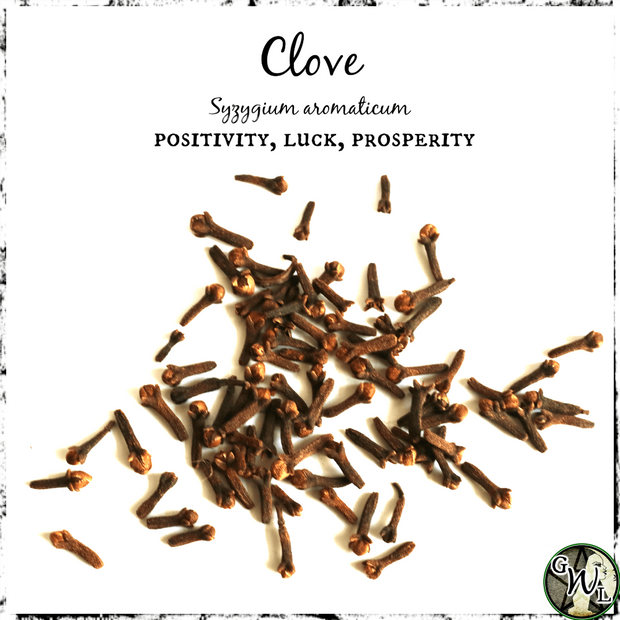 Clove Buds for Money, Success, Positivity, The Witch's Guide