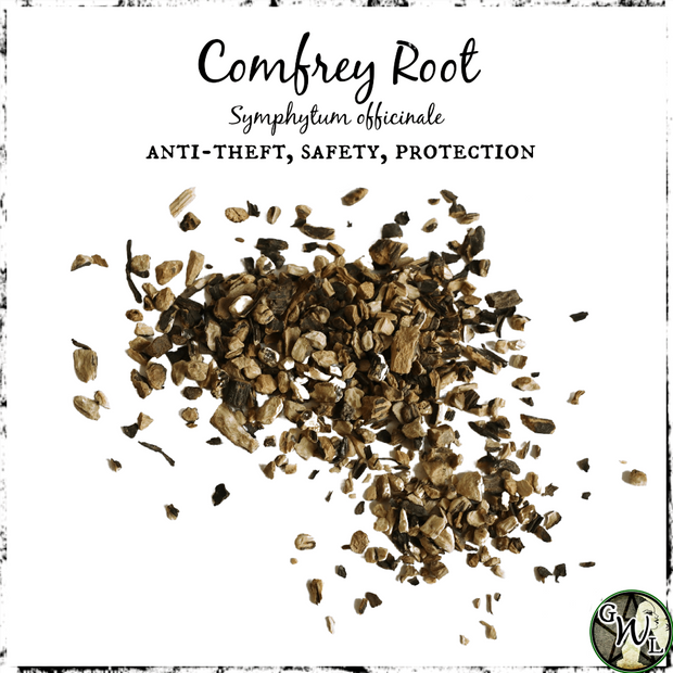Comfrey Root for Anti-theft, safety, protection, The Witch's Guide