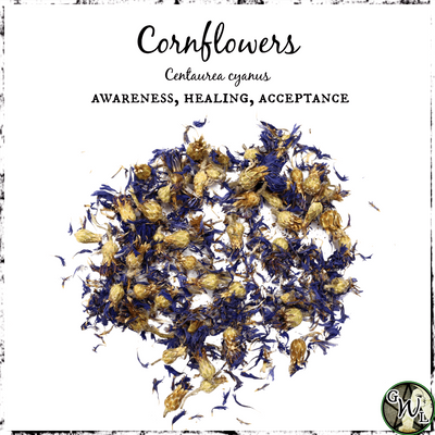 Cornflowers for Acceptance, Healing, Awareness, The Witch's Guide