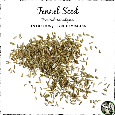Fennel Seed | Herb for Intuition, Psychic Visions