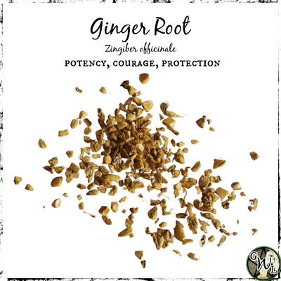 Ginger Root for Potency, Courage, and Protection, The Witch's Guide