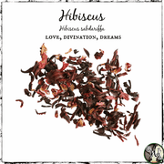 Hibiscus Flowers for Love, Divination, and Dreams, The Witch's Guide, Witchcraft Herbs