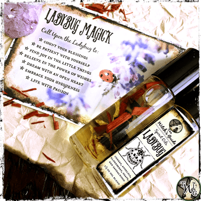 Ladybug Spirit Oil, Animal Spirit Guide, The Witch's Guide