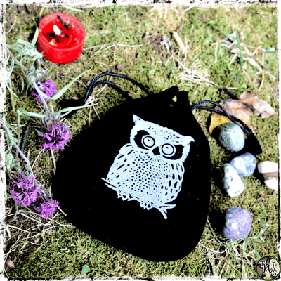 Velvet Owl Pouch, Drawstring Bag for Holding Crystals, Herbs, Keepsakes, The Witch's Guide