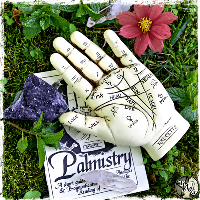 Palmistry Hand with Guide Book, Divination, The Witch's Guide