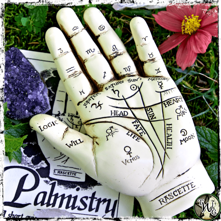 Palmistry Hand and Guide, Divination, Chiromancy, The Witch's Guide