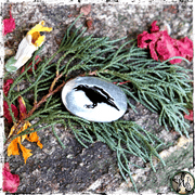 Raven Pocket Stone, Raven Spirit Animal Talisman, The Witch's Guide