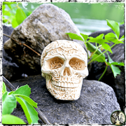 Ornate Ritual Skull, The Witch's Guide, Honoring the Ancestors