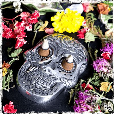 Skull Incense Holder, Incense Cones, Incense Sticks, The Witch's Guide
